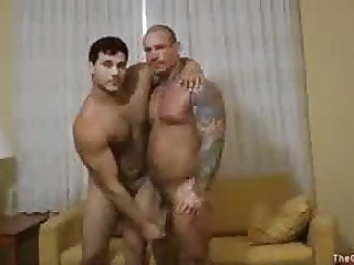 Muscle bears bear (gay) big cock (gay) blowjob (gay)