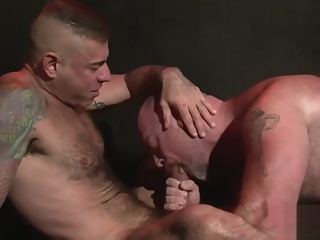 Two Horny Daddy Bears bareback bear gay